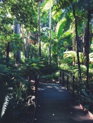 Royal Botanical Gardens Melbourne