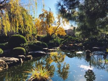 Himeji Garden Adelaide