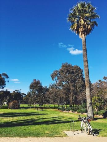Park Adelaide