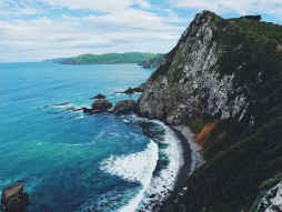 Kaka point nugget nz