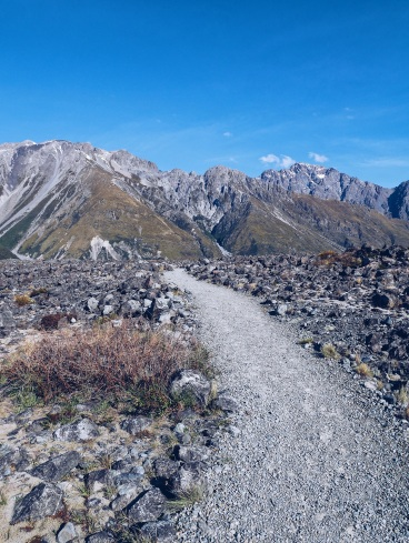 Tasman River NZ landscape