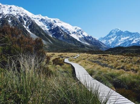 Track Easy New Zealand